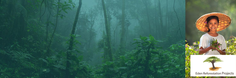 Bäume pflanzen, Leben retten