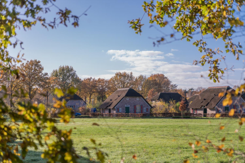 Vakantiepark Standaard Vakantieboerderij 6p Den Ham 1