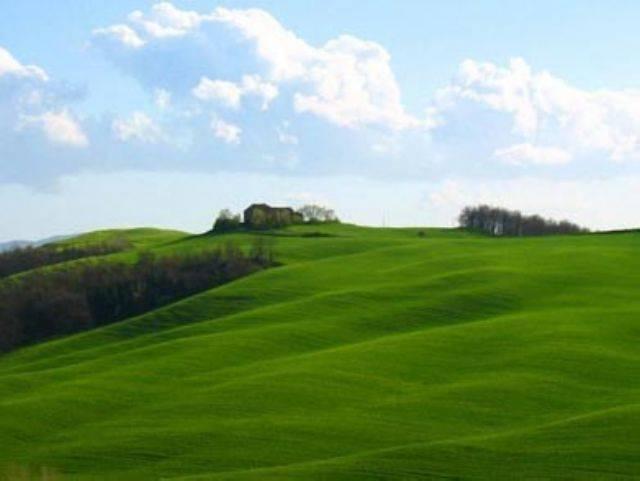 Ferienwohnung Arancio 1 (365884), Greve in Chianti, Florenz - Chianti - Mugello, Toskana, Italien, Bild 21