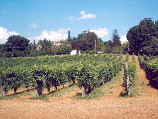 Ferienwohnung La Taverna (370073), Umbertide, Perugia, Umbrien, Italien, Bild 24