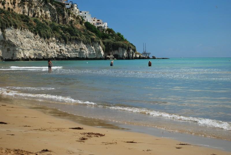 Ferienwohnung Trilo 5 (491874), Vieste, Adriaküste (Apulien), Apulien, Italien, Bild 26