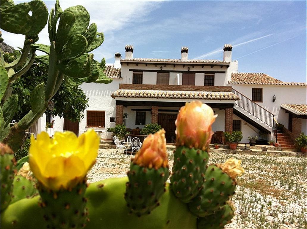 Ferienwohnung Atroe (683592), Periana, Malaga, Andalusien, Spanien, Bild 16