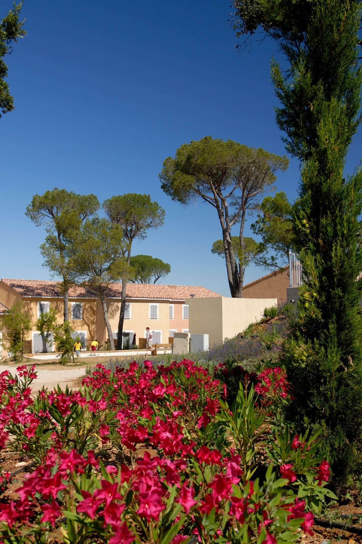 Ferienwohnung Calvisson Maisonnette Duplex 4 Le Mas des Vignes (1063879), Calvisson, Gard Binnenland, Languedoc-Roussillon, Frankreich, Bild 22