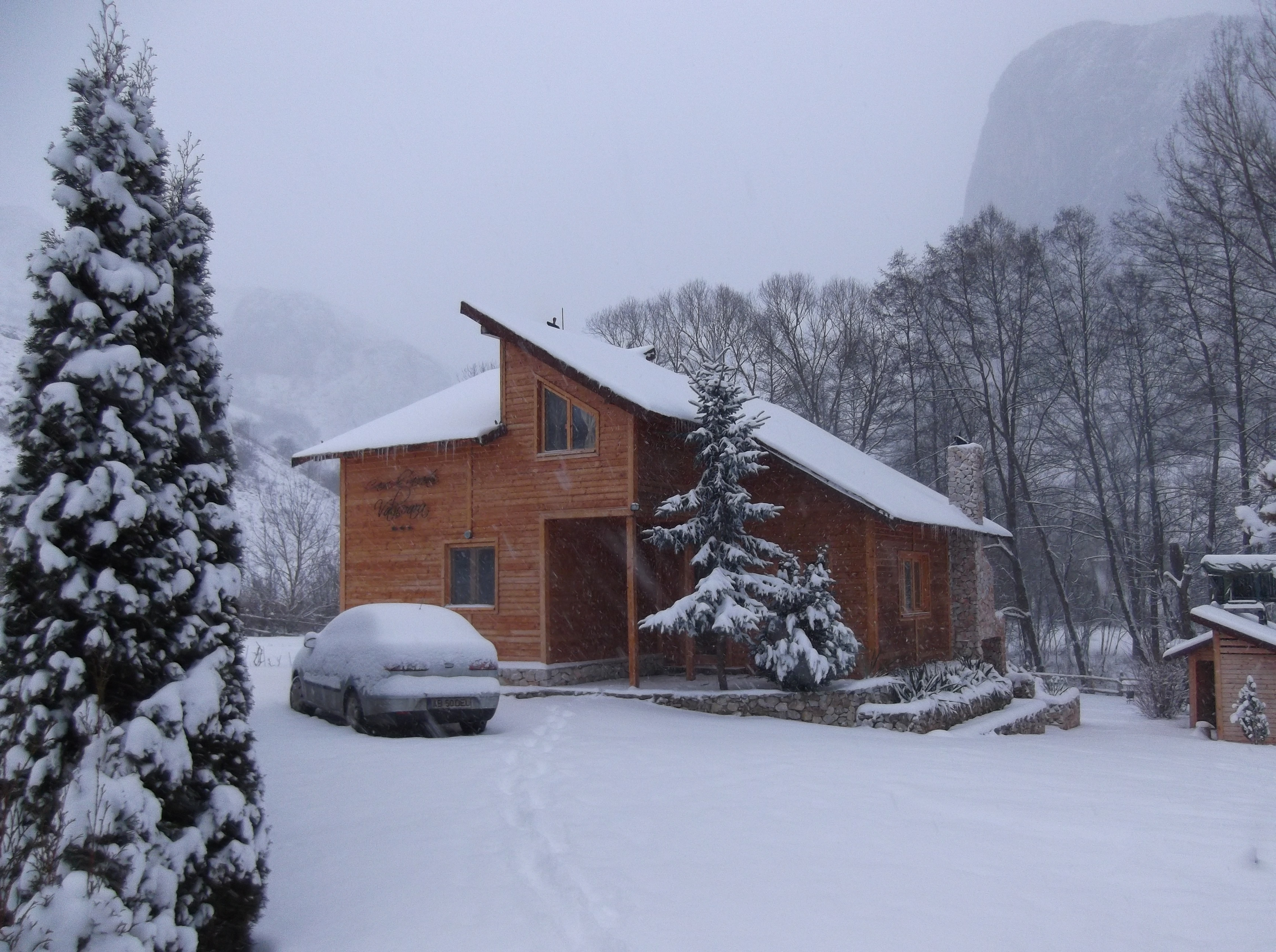 Villa Transylvania Holiday Home Valisoara 1