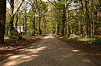 Holiday park Type B Comfort 5 persoons Doorn Thumbnail 22