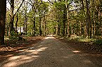 Holiday park Type B Comfort 5 persoons Doorn Thumbnail 34