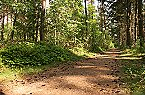 Holiday park Type B Comfort 5 persoons Doorn Thumbnail 35