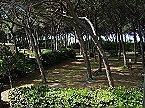 Holiday park BN-Monolocale 2+2 Vada Thumbnail 31