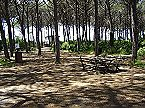 Holiday park BN-Monolocale 2+2 Vada Thumbnail 32