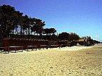 Holiday park BN-Monolocale 2+2 Vada Thumbnail 44
