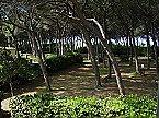 Holiday park BN-Monolocale 2+2 Vada Thumbnail 12