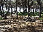 Holiday park BN-Monolocale 2+2 Vada Thumbnail 13