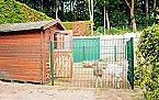 Vakantiepark Bungalow 6p Noordwijk Thumbnail 12