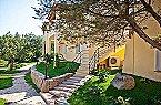 Appartement Stella di G. Trilo 7DS Porto Rotondo Thumbnail 15
