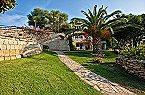 Appartement Stella di G. Trilo 7DS Porto Rotondo Thumbnail 9