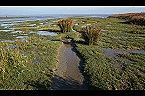 Villa Vakantiehuisje Golfslag Goedereede Thumbnail 35