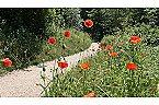 Villa Vakantiehuisje Golfslag Goedereede Thumbnail 54
