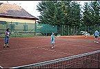 Villa Family House Fuchs Horní Branná Miniature 42
