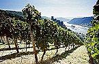 Bungalow Holiday park- Bergamo Stromberg Thumbnail 20