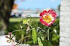 Villa Holiday home- Bungalow Nieuw Loosdrecht Miniaturansicht 42