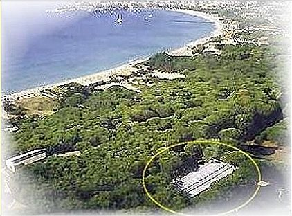 Parcs de vacances, Pino mono, BN69677