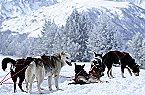Vakantiepark Les Cabannes 3p 7 Les Cabannes Thumbnail 6