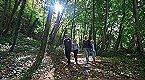 Ferienpark La Terre 6+2p Blaimont Miniaturansicht 47