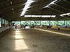 Villaggio turistico Finse Bungalow 6P Meppen Miniature 20