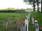 Vakantiepark Finse Bungalow 4P, Comfort Meppen Thumbnail 31