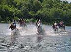 Vakantiepark Finse Bungalow 4P, Comfort Meppen Thumbnail 24