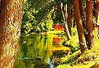 Ferienwohnung 10 persoons Bungalow Trio 17 Lagow Miniaturansicht 16