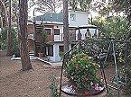 Appartement Bougainvillea 3+2 Marina di Castagneto Carducci Thumbnail 1