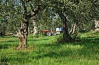 Ferienpark Agriturismo di Qualità L'OLIVETO Chalet 6 Tocco da Casauria Miniaturansicht 23