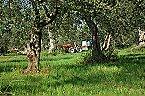 Vakantiepark Agriturismo di Qualità L'OLIVETO Chalet 6 Tocco da Casauria Thumbnail 21
