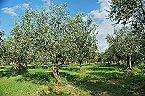Vakantiepark Agriturismo di Qualità L'OLIVETO Chalet 6 Tocco da Casauria Thumbnail 22
