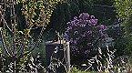 Holiday home La Mimbre Lanjarón Thumbnail 21
