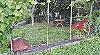 Holiday home La Mimbre Lanjarón Thumbnail 25