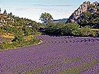 Holiday park Drome Provencale Montbrun Les Bains 4p7 Montbrun les Bains Thumbnail 19