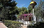 Holiday park Trilocale 3 Vieste Thumbnail 14