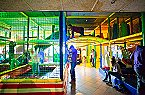Vakantiepark PDS Deluxe 5 personen Noordwijk Thumbnail 32