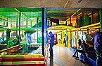 Vakantiepark PDS Comfort 4 personen Noordwijk Thumbnail 39