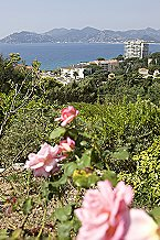 Appartement Cannes Villa Francia 2p 4/5p Standard Cannes Thumbnail 13