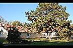 Chalet Holiday home- ERSZ Kunszállás Thumbnail 1