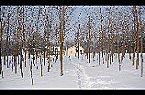 Chalet Holiday home- NAGY Kunszállás Miniature 19