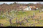 Chalet Holiday home- ERNA Kunszállás Miniature 6