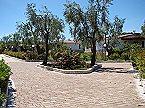 Villa Villetta Singola Vieste Thumbnail 13