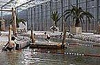 Parque de vacaciones BM Kattenbos Mobile home 6p Lommel Miniatura 16