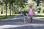 Ferienpark MB Noordiek Chalet Hoek Miniaturansicht 26