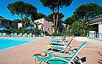 Villa Gassin/St. Tropez Villa 3p6 Le Clos Gassin Thumbnail 13