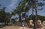 Ile de Re MH 4/6 Tamarins